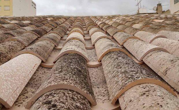 Intervención en vivienda tradicional en Monovar